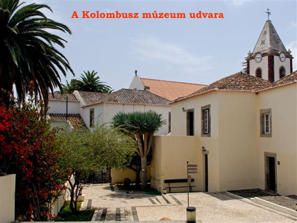 A Kolombusz múzeum az egykori lakóház mellett.