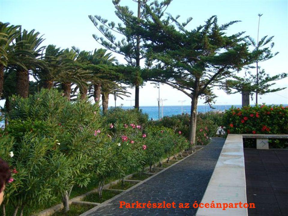 Kolombusz szobra Vila Baleirán