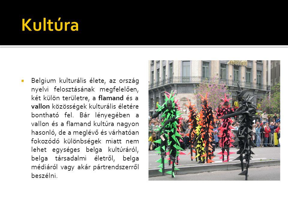  Belgium kulturális élete, az ország nyelvi felosztásának megfelelően, két külön területre, a flamand és a vallon közösségek kulturális életére bonth