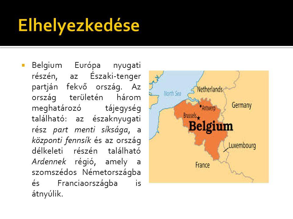  Belgium teljes területe 33 990 km², ebből szárazföld 30 528 km², vízfolyások és tavak területe kb.