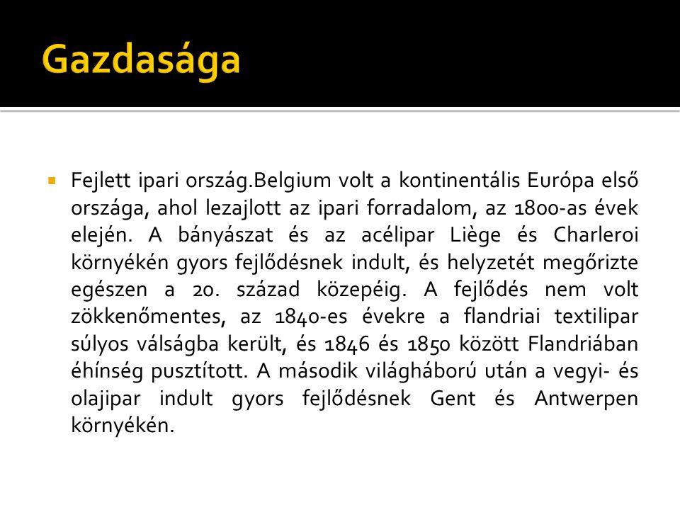  Fejlett ipari ország.Belgium volt a kontinentális Európa első országa, ahol lezajlott az ipari forradalom, az 1800-as évek elején. A bányászat és az