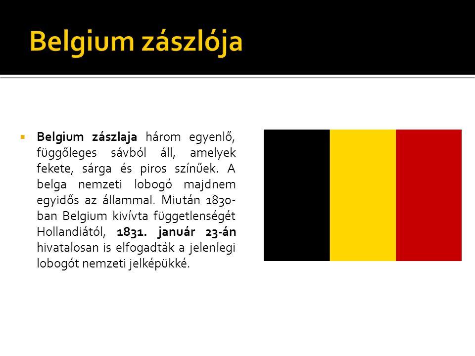  Belgium zászlaja három egyenlő, függőleges sávból áll, amelyek fekete, sárga és piros színűek. A belga nemzeti lobogó majdnem egyidős az állammal. M