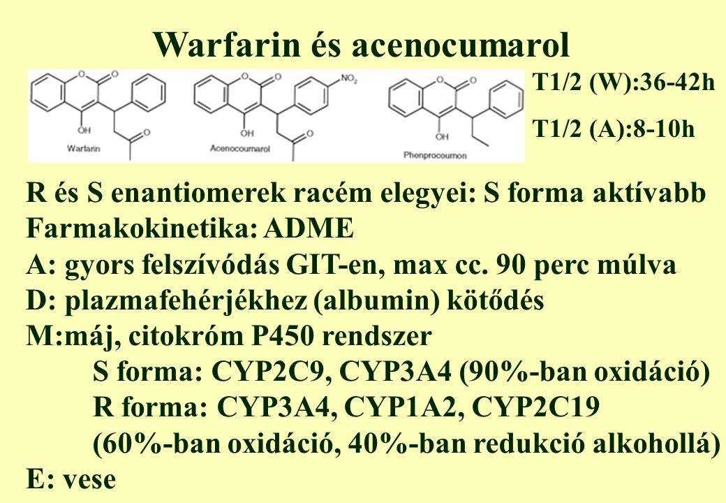 Warfarin és acenocumarol R és S enantiomerek racém elegyei: S forma aktívabb Farmakokinetika: ADME A: gyors felszívódás GIT-en, max cc.