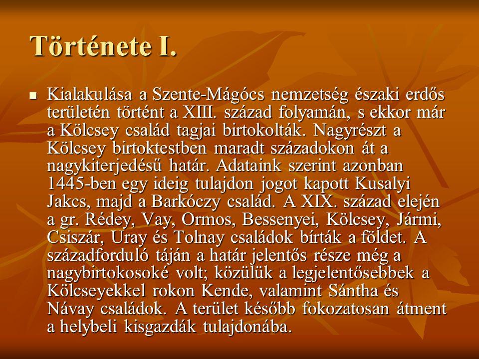 Története I. Kialakulása a Szente-Mágócs nemzetség északi erdős területén történt a XIII. század folyamán, s ekkor már a Kölcsey család tagjai birtoko