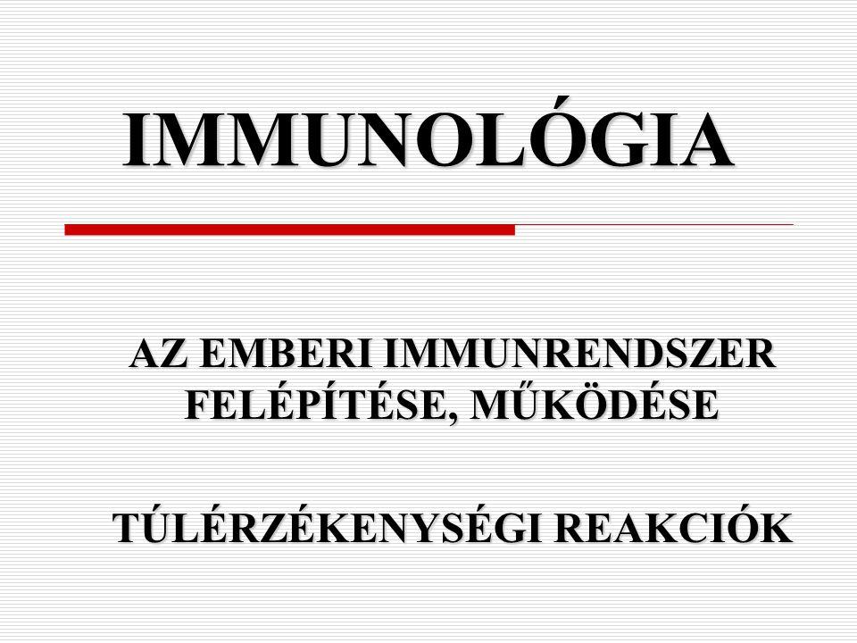 IV. típusú túlérzékenységi reakció (késői vagy tuberculin)