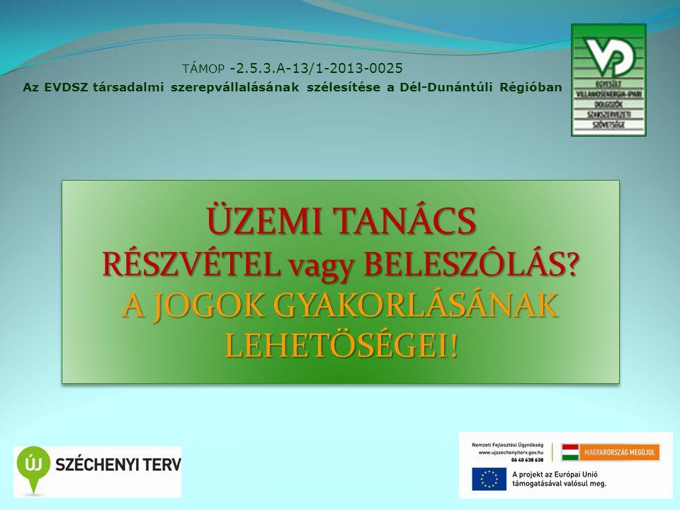 2 TÁMOP -2.5.3.A-13/1-2013-0025 Az EVDSZ társadalmi szerepvállalásának szélesítése a Dél-Dunántúli Régióban ÜZEMI TANÁCS RÉSZVÉTEL vagy BELESZÓLÁS? A