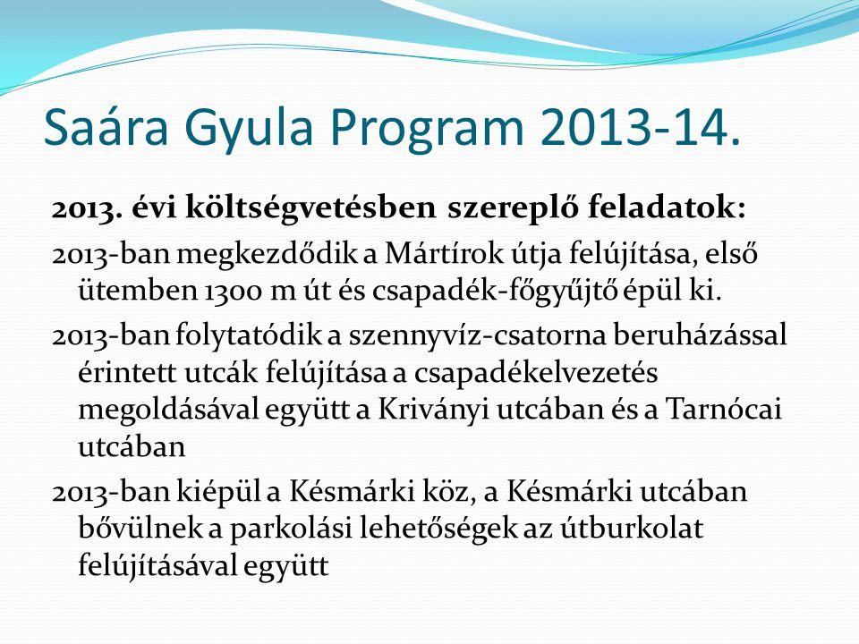 Saára Gyula Program 2013-14. 2013.