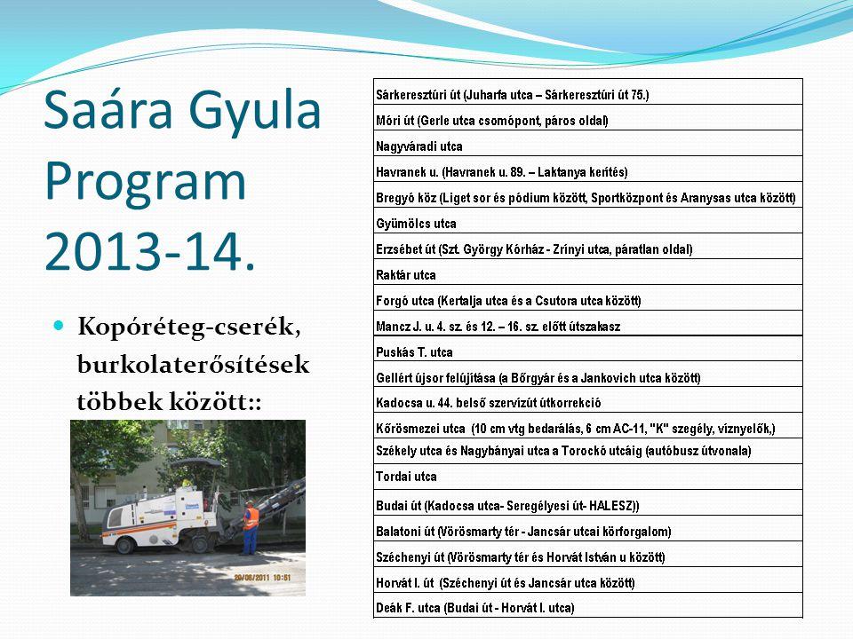 Saára Gyula Program 2013-14. Kopóréteg-cserék, burkolaterősítések többek között::