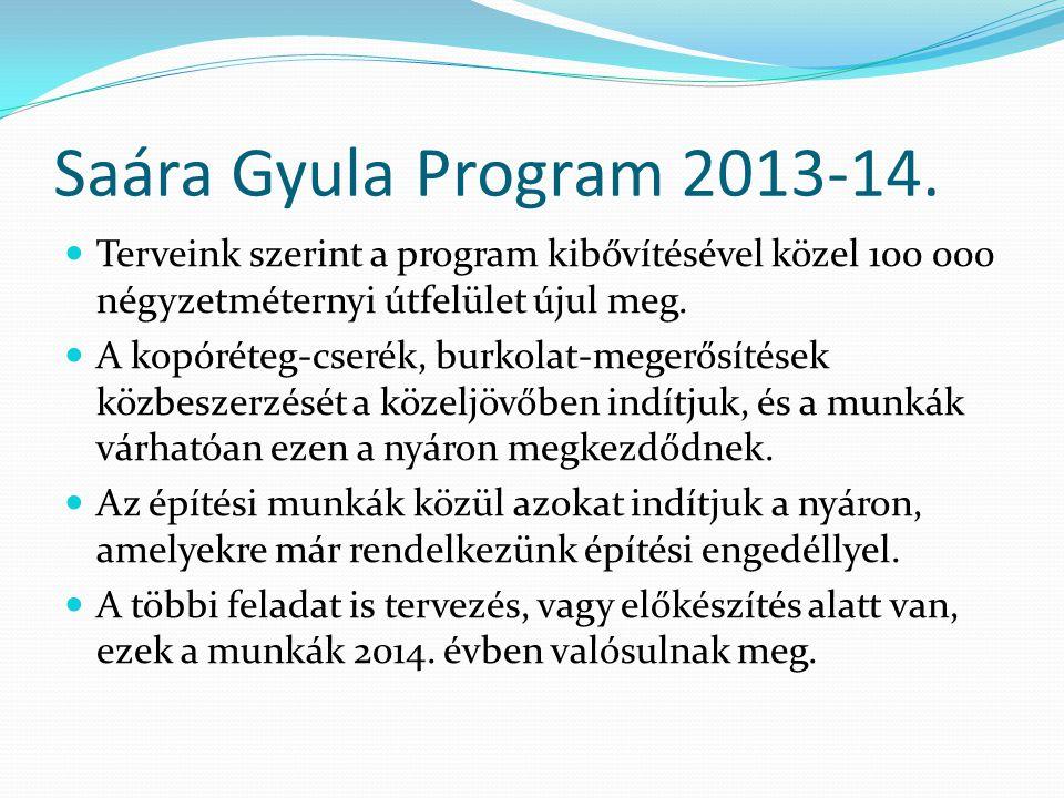 Saára Gyula Program 2013-14.