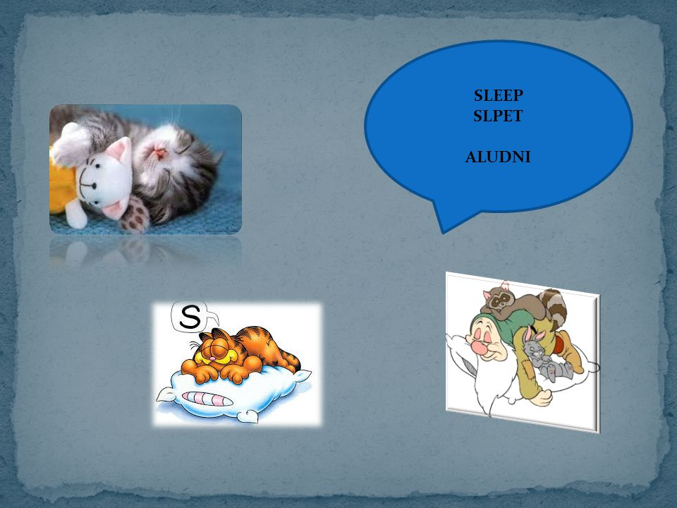 SLEEP SLPET ALUDNI