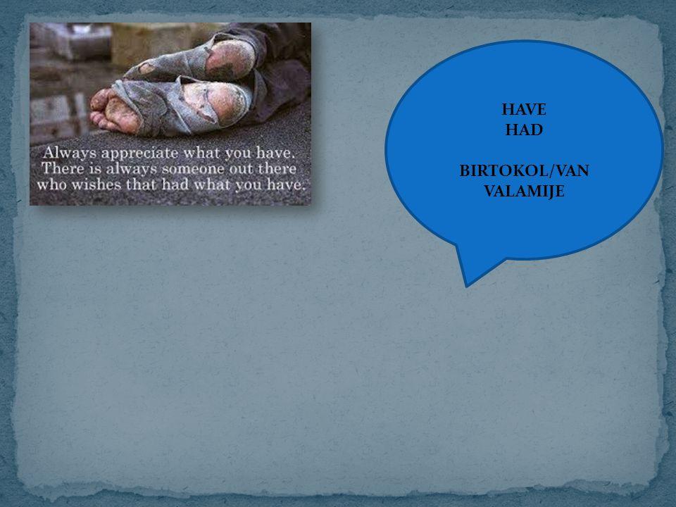HAVE HAD BIRTOKOL/VAN VALAMIJE
