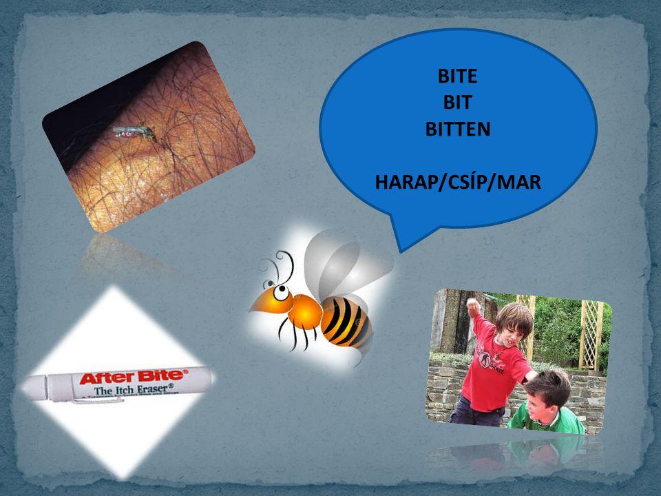 BITE BIT BITTEN HARAP/CSÍP/MAR