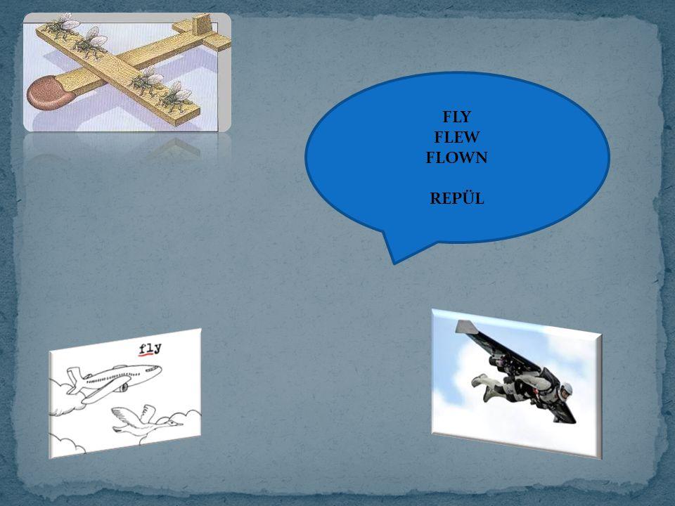 FLY FLEW FLOWN REPÜL