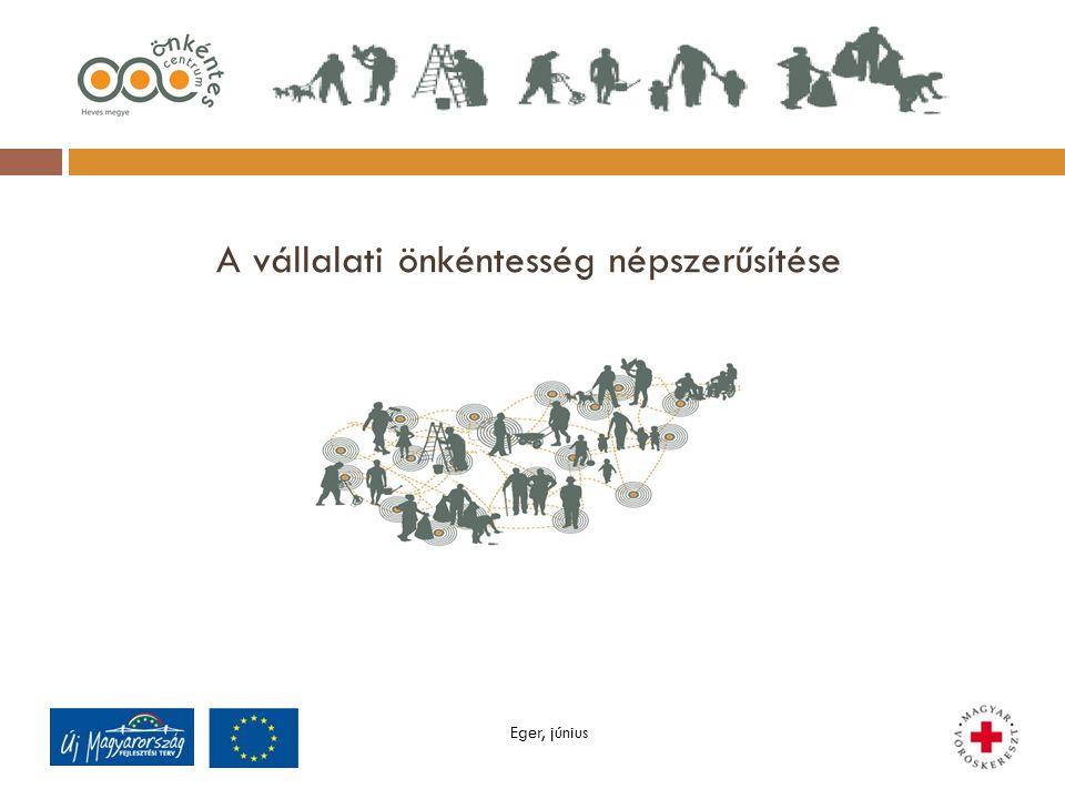 A vállalati önkéntesség népszerűsítése Eger, június