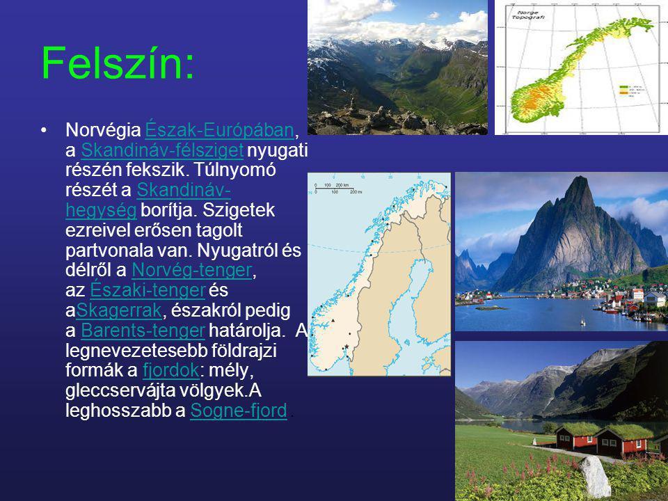 Felszín: Norvégia Észak-Európában, a Skandináv-félsziget nyugati részén fekszik. Túlnyomó részét a Skandináv- hegység borítja. Szigetek ezreivel erőse