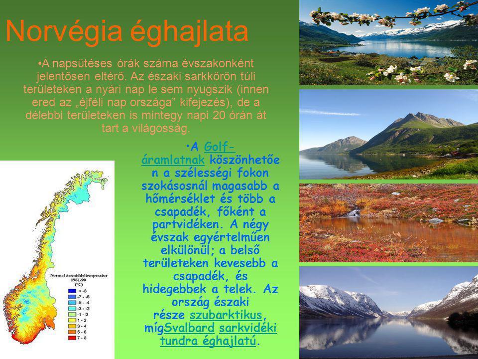 Norvégia éghajlata A Golf- áramlatnak köszönhetőe n a szélességi fokon szokásosnál magasabb a hőmérséklet és több a csapadék, főként a partvidéken. A