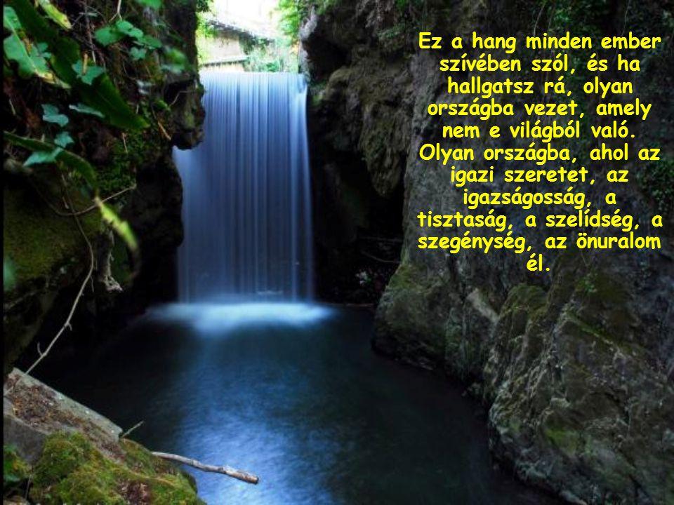 Azok közé tartozol, akik nem a világ által kínált javakból élnek, hanem abból, amit Isten bennük szóló hangja mond.