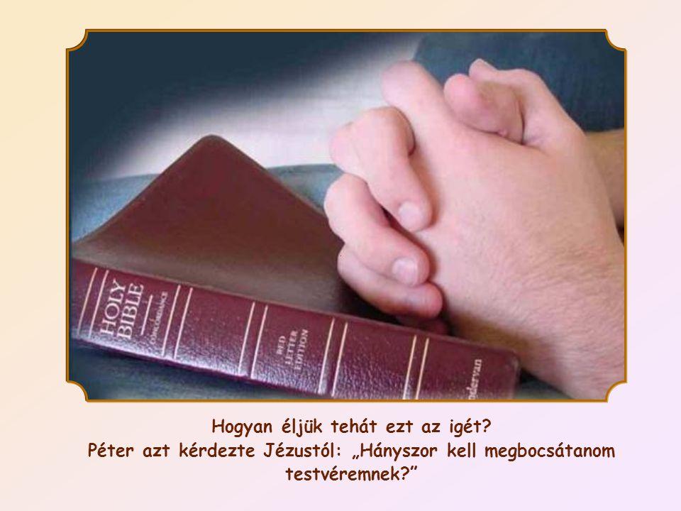 """""""Nem mondom: hétszer, hanem hetvenszer hétszer. (Mt 18,22)"""