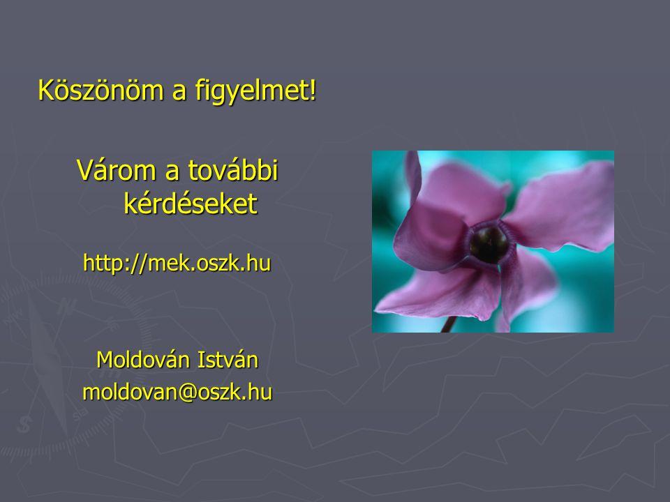 Köszönöm a figyelmet! Várom a további kérdéseket http://mek.oszk.hu Moldován István moldovan@oszk.hu