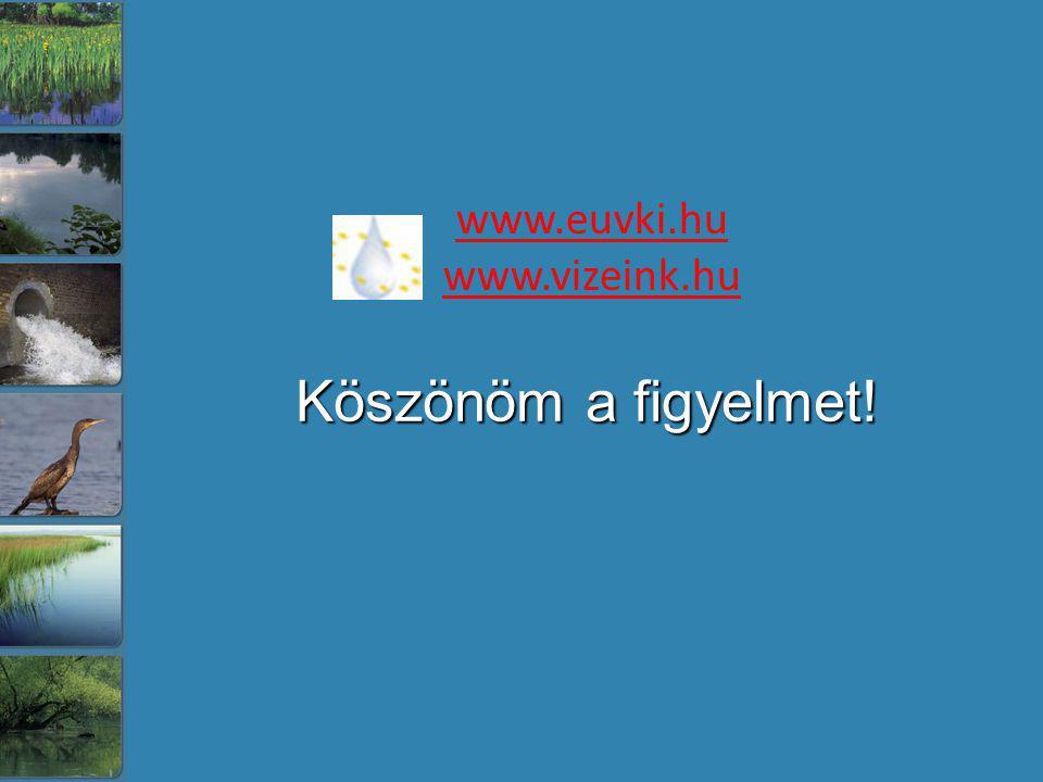 Köszönöm a figyelmet! www.euvki.hu www.vizeink.hu