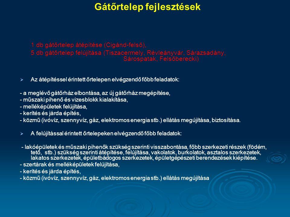 Gátőrtelep fejlesztések 1 db gátőrtelep átépítése (Cigánd-felső), 5 db gátőrtelep felújítása (Tiszacermely, Révleányvár, Sárazsadány, Sárospatak, Fels