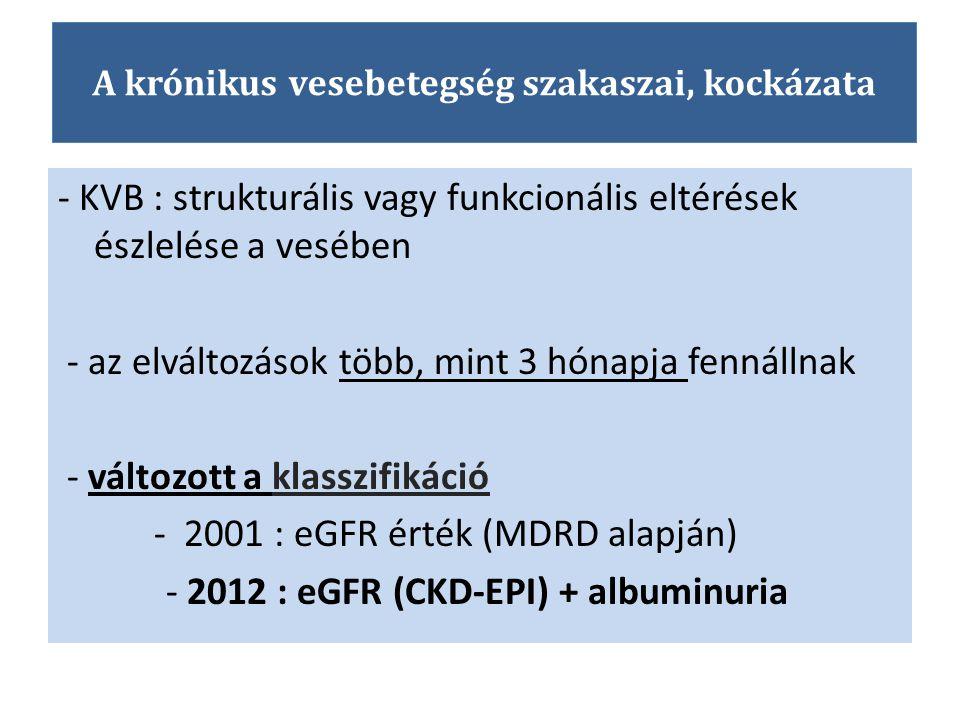 A krónikus vesebetegség szakaszai, kockázata - KVB : strukturális vagy funkcionális eltérések észlelése a vesében - az elváltozások több, mint 3 hónap
