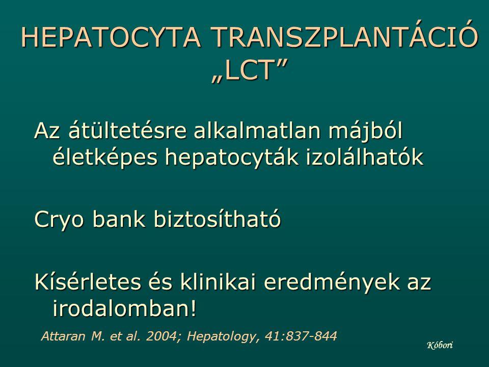 LCT I.