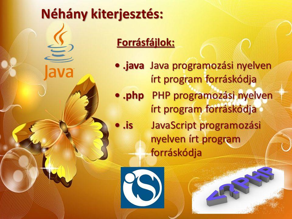 Néhány kiterjesztés: Forrásfájlok:.java Java programozási nyelven.java Java programozási nyelven írt program forráskódja írt program forráskódja.php P