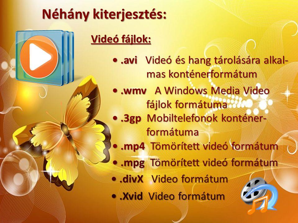 Néhány kiterjesztés: Videó fájlok:.avi Videó és hang tárolására alkal-.avi Videó és hang tárolására alkal- mas konténerformátum mas konténerformátum.w