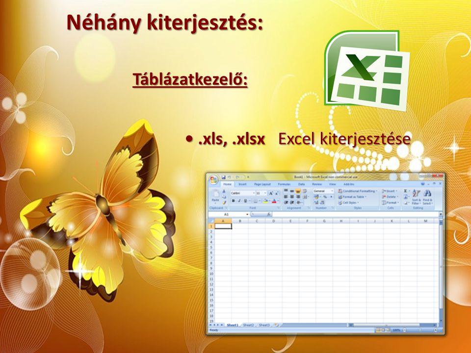 Néhány kiterjesztés: Táblázatkezelő:.xls,.xlsx Excel kiterjesztése.xls,.xlsx Excel kiterjesztése