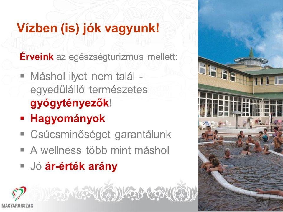 Magyarország a világ egyik termál nagyhatalma  1372 termálvízkút  207 elismert gyógyvíz  385 településen működik termál-, illetve gyógyvizű fürdő  13 gyógyhely  54 minősített gyógyszálló  70 minősített gyógyfürdő  5 gyógybarlang  224 elismert ásványvíz  5 gyógyiszaplelőhely  1 mofetta