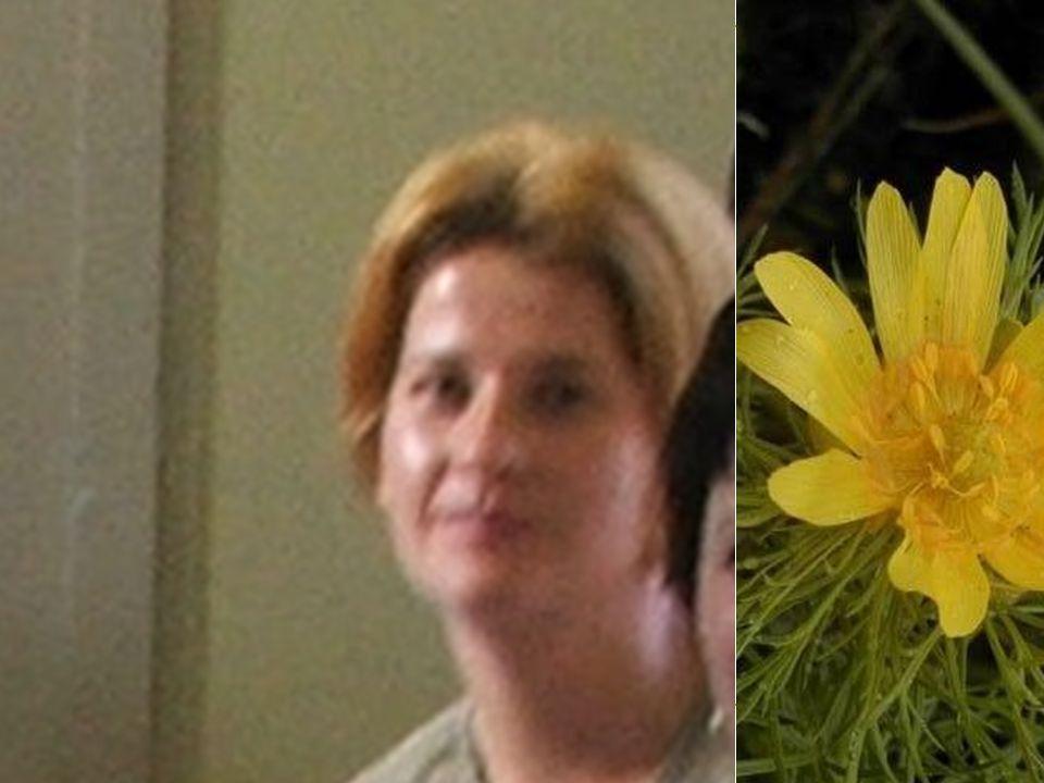 Szakrendelés dolgozói: Szekretár Györgyné Hajni Adminisztrátor: Kissné Kesztyűs Mária Anno:2002.