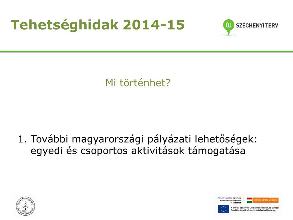 Tehetséghidak 2014-15 Mi történhet? 1. További magyarországi pályázati lehetőségek: egyedi és csoportos aktivitások támogatása