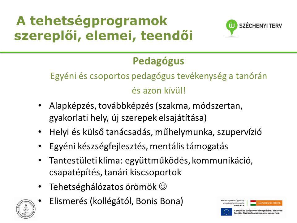 A tehetségprogramok szereplői, elemei, teendői Pedagógus Egyéni és csoportos pedagógus tevékenység a tanórán és azon kívül! Alapképzés, továbbképzés (