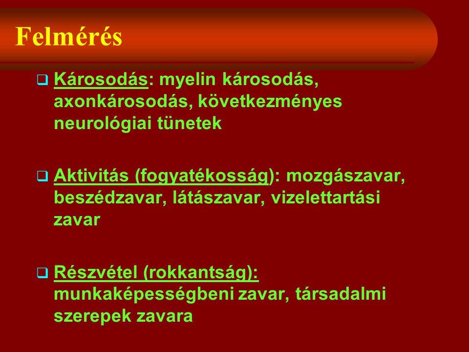Felmérés  Károsodás: myelin károsodás, axonkárosodás, következményes neurológiai tünetek  Aktivitás (fogyatékosság): mozgászavar, beszédzavar, látászavar, vizelettartási zavar  Részvétel (rokkantság): munkaképességbeni zavar, társadalmi szerepek zavara
