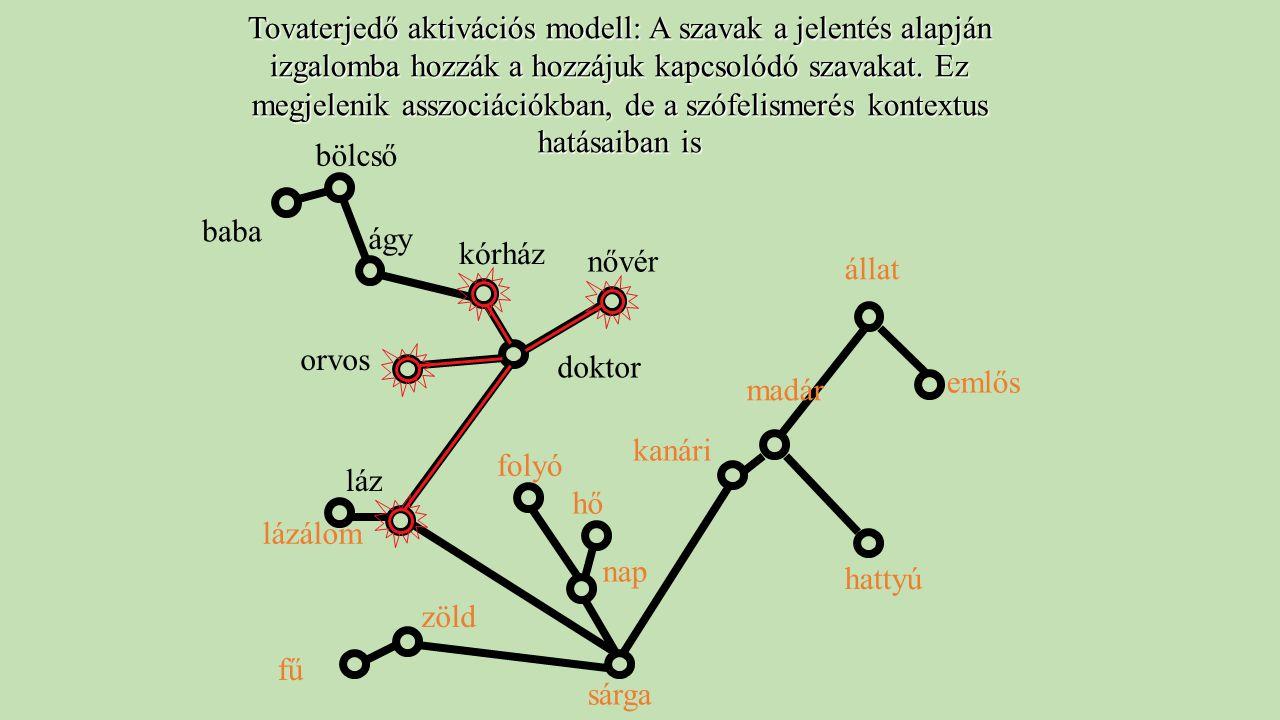 kanári madár állat hattyú emlős Tovaterjedő aktivációs modell: A szavak a jelentés alapján izgalomba hozzák a hozzájuk kapcsolódó szavakat. Ez megjele