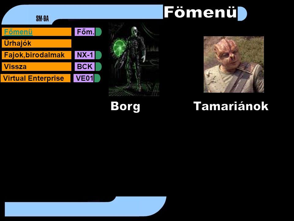FőmenüFőm. Űrhajók Fajok,birodalmakNX-1VisszaBCKVirtual EnterpriseVE01