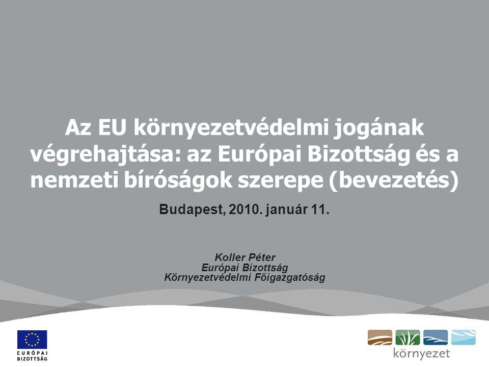 Az EU környezetvédelmi jogának végrehajtása: az Európai Bizottság és a nemzeti bíróságok szerepe (bevezetés) Budapest, 2010.