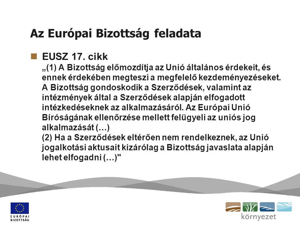 Az Európai Bizottság által folytatott kötelezettségszegési eljárás (1.