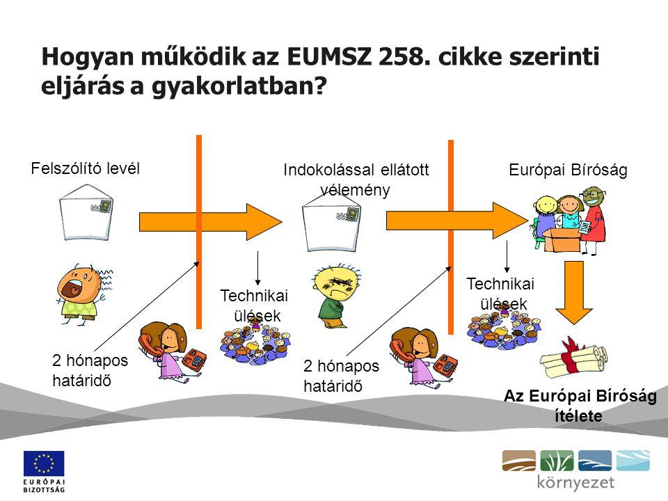 Hogyan működik az EUMSZ 258. cikke szerinti eljárás a gyakorlatban.