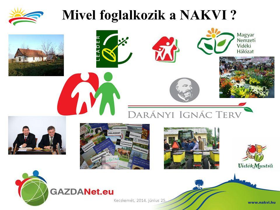 Mi az a Magyar Nemzeti Vidéki Hálózat.