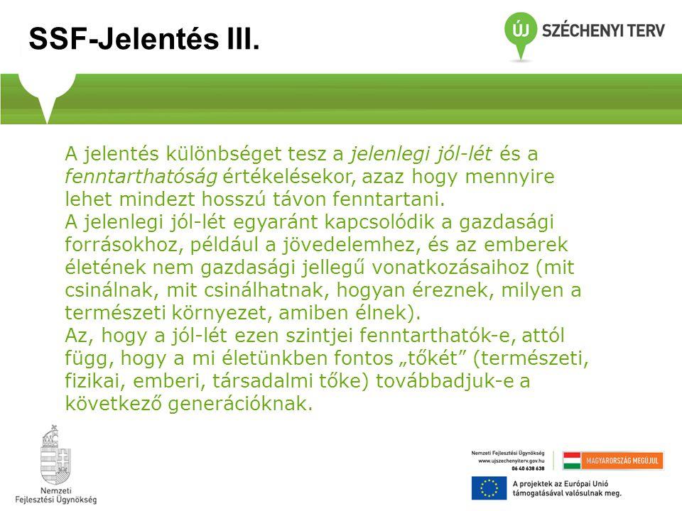 A hazai felmérések közül négy érdemel még külön említést: Az EU-Bizottság által végzett Eurobarométer – Nemzeti jelentés, illetve az Eurofound 2007-ben végzett második EQLS-felmérés (Európai Életminőségi Vizsgálat) nemzeti adatai.