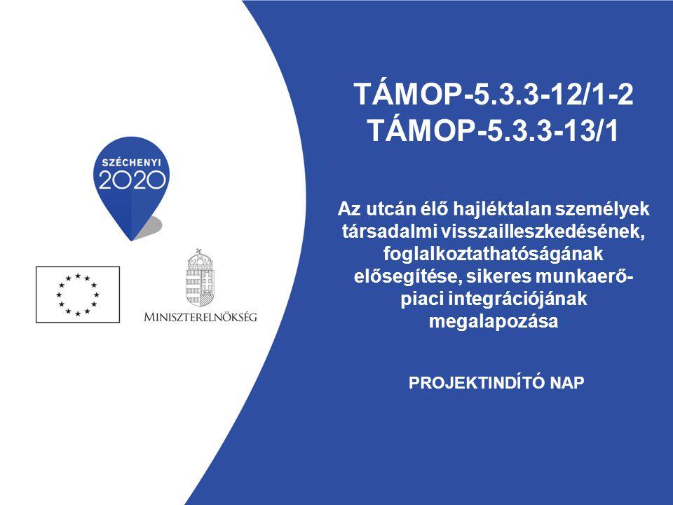 TÁMOP-5.3.3-12/1-2 TÁMOP-5.3.3-13/1 Az utcán élő hajléktalan személyek társadalmi visszailleszkedésének, foglalkoztathatóságának elősegítése, sikeres