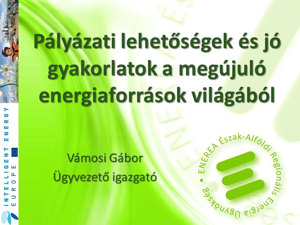 Pályázati lehetőségek és jó gyakorlatok a megújuló energiaforrások világából Vámosi Gábor Ügyvezető igazgató