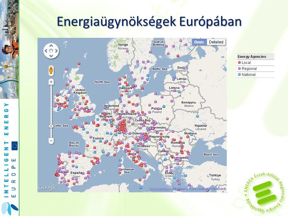 Regionális fejlődésben meghatározó jelentősége van Az energiatakarékosságnak Az energiahatékonyságnak A megújuló energiaforrások fokozott felhasználásának A regionális erőforrások előtérbe helyezésének (helyben előállítani, helyben felhasználni) Intézményrendszernek, melynek központi feladata az energiahatékonyság ösztönzése (Regionális Energia Ügynökség)