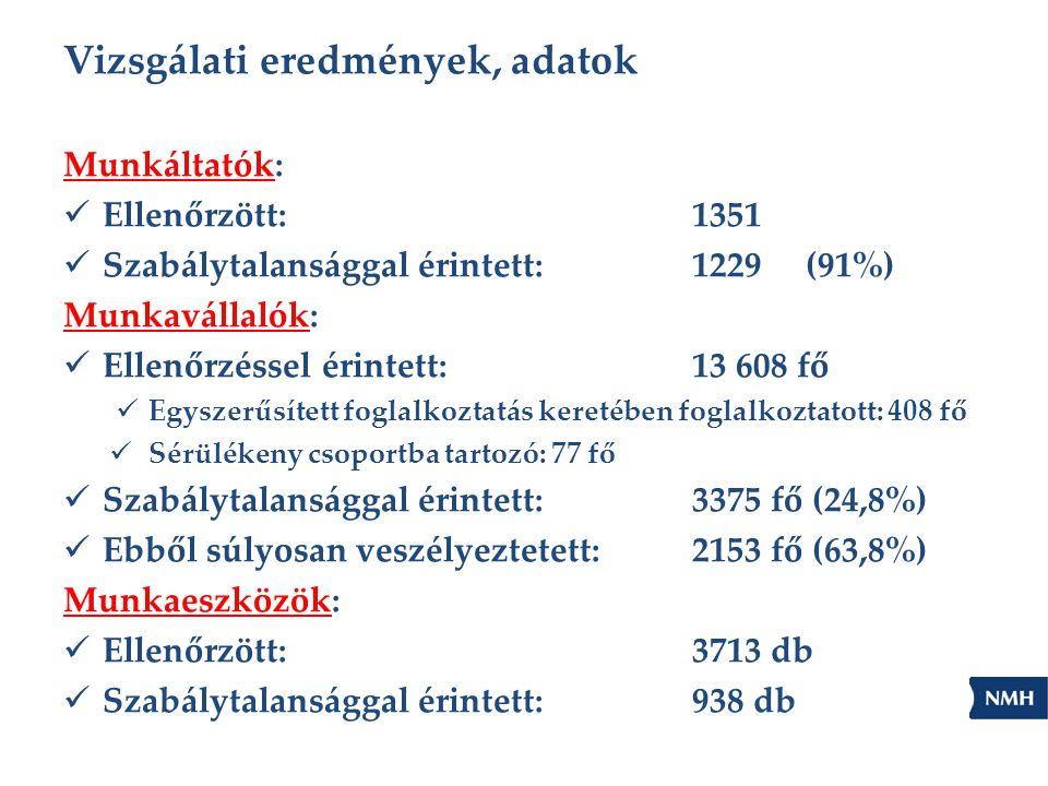 Vizsgálati eredmények, adatok Munkáltatók: Ellenőrzött:1351 Szabálytalansággal érintett: 1229 (91%) Munkavállalók: Ellenőrzéssel érintett:13 608 fő Eg