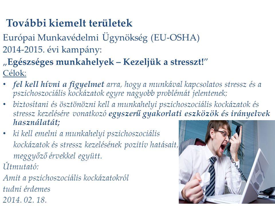 """További kiemelt területek Európai Munkavédelmi Ügynökség (EU-OSHA) 2014-2015. évi kampány: """"Egészséges munkahelyek – Kezeljük a stresszt!"""" Célok: fel"""