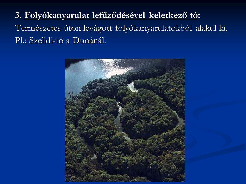 3. Folyókanyarulat lefűződésével keletkező tó: Természetes úton levágott folyókanyarulatokból alakul ki. Pl.: Szelidi-tó a Dunánál.