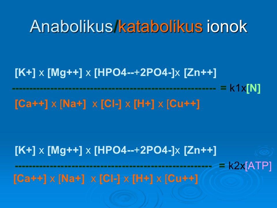 Anabolikus/katabolikus ionok [K+] x [Mg++] x [HPO4--+2PO4-]x [Zn++] --------------------------------------------------------- = k1x[N] [Ca++] x [Na+]