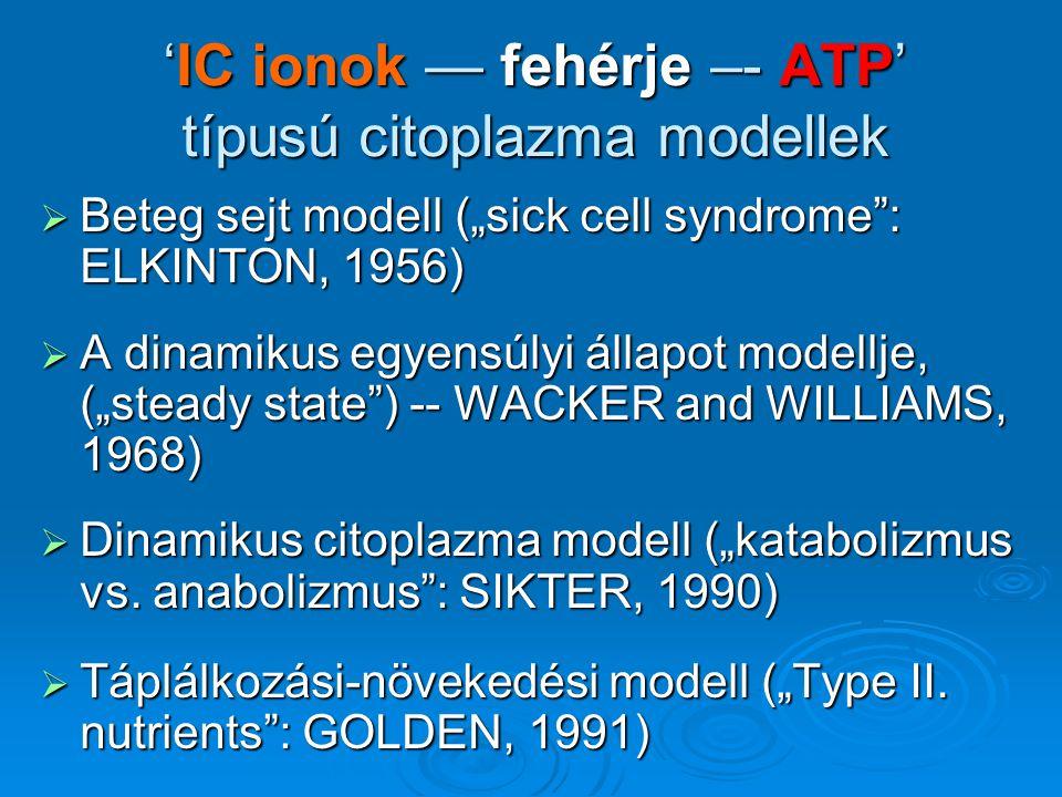 """'IC ionok — fehérje –- ATP' típusú citoplazma modellek  Beteg sejt modell (""""sick cell syndrome"""": ELKINTON, 1956)  A dinamikus egyensúlyi állapot mod"""